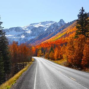 road_fall2